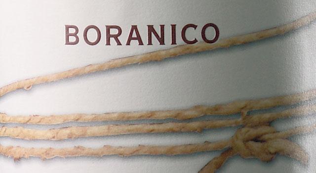 Boranico